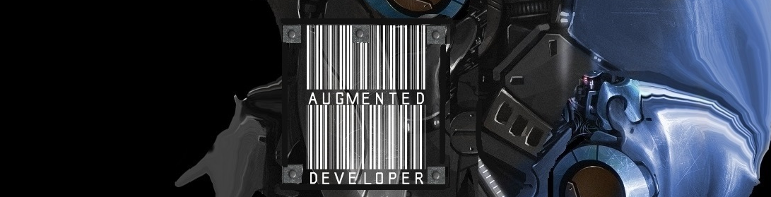 Augmented Developer